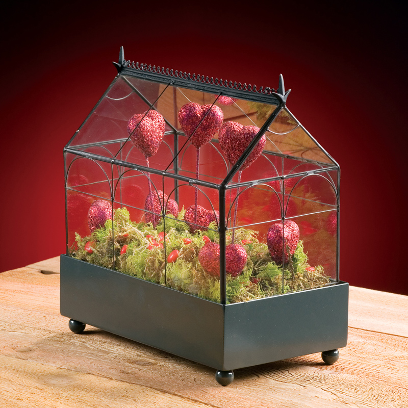 Traditional Table Top Terrariums