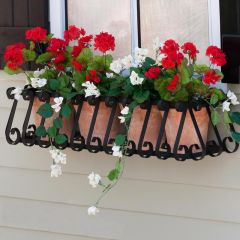 European Window Box Cage - Choose from 8 sizes