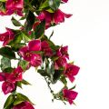 UV Protected Artificial Bougainvillea Vines - Lavender Fuchsia