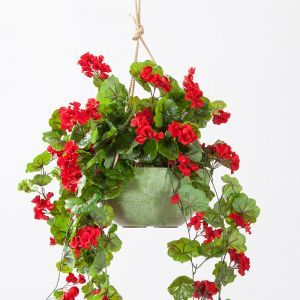 10in. Naples Hanging Bowl Planter - Sage
