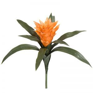 14in. Artificial Guzmania Bromeliad - Outdoor - Orange