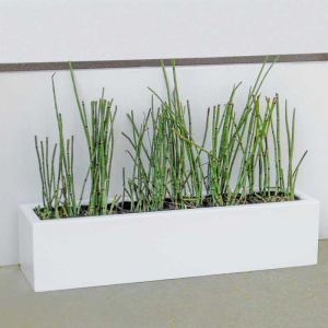24in. Small Urban Chic Rectangular Fiberglass Porch Planter - Choose from 3 Colors