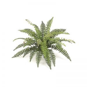 29in.  Fishtail Fern - Green|Indoor