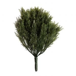 30in. Cypress Bush, Outdoor
