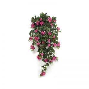 42in. Bougainvillea Bush - Fuchsia|Indoor - NFR
