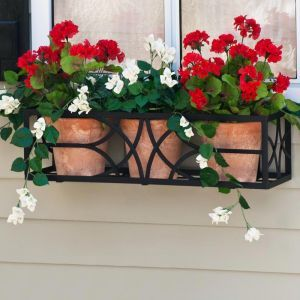 Falling Water Window Box Cages- Choose 8 Sizes