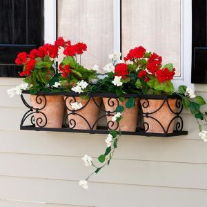Garden Gate Window Box Cage- Choose from 8 Sizes