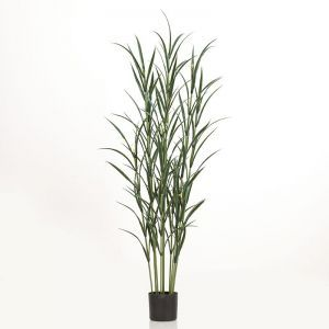 72in. Pampas Grass Cluster in Weighted Base, Outdoor Rated