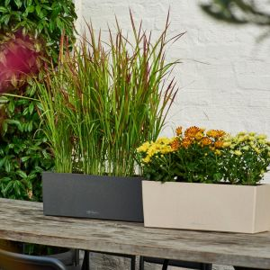 Balconera Textured Planter Boxes- Choice of 2 Sizes and 3 Stone Colors