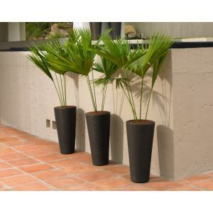 Brighton Tall Modern Planters - Choose from 3 sizes and 4 Colors
