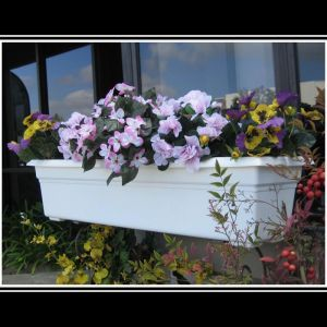 Countryside Plastic Flower Box Planters or Liners