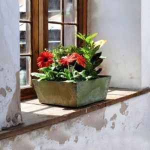 Eloquence Low Square Planter -Choose from 2 sizes and 2 colors