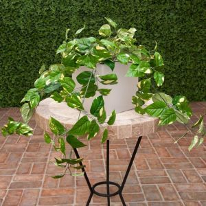 28in. Pothos Bush, Fire Retardant