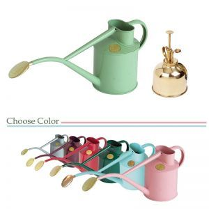 Haws Indoor Metal Watering Can Gift Set - Choose Color
