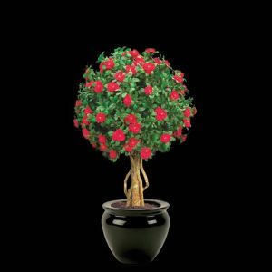 24in. Large Azalea Topiary Ball