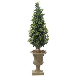 5' Outdoor Artificial Laurel Cone Topiary with Natural Trunk