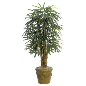 5' Lady Palm Tree - Green|Indoor