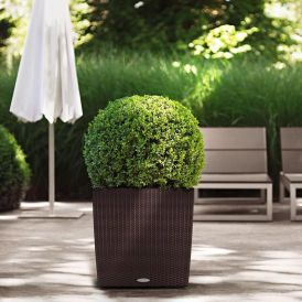 Cottage Weave CUBE Self-Watering Planter
