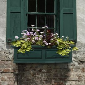 Presidential Window Boxes - Green