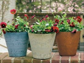 8in. Naples Planter - Choose from 3 colors