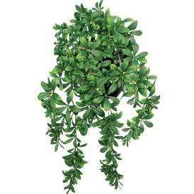 34in. Hanging Flowerless Azalea Vine, Outdoor Artificial