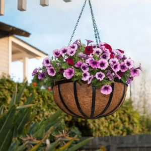 12 inch English Garden Flat Steel Hanging Basket with Coco Liner and Chain