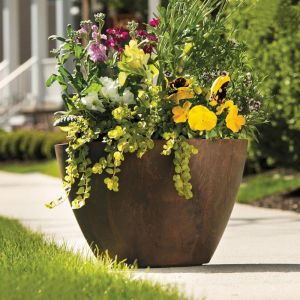 16in. Naples Bowl Planter - Choose from 2 colors