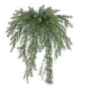 20in. Outdoor Artificial Sprengeri Fern