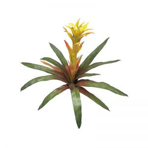 21in. Bromeliad - Orange/Yellow, Indoor