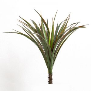 21in. Liriope Bush, Indoor Rated
