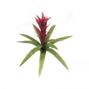 22in. Artificial Guzmania Bromeliad - Outdoor - Fuchsia