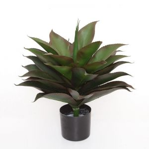 24in. Broad Leaf Agave in Weighted Base, Outdoor Rated