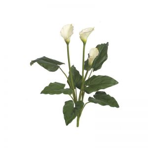 32in. Calla Lily Bush - White, Indoor