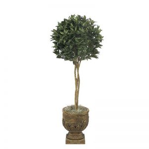 4.5' Bay Leaf Ball Topiary - Indoor