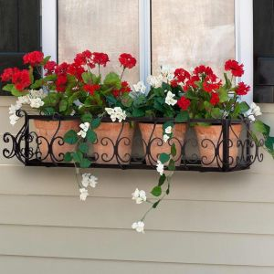 San Marino Window Box Cages- Choose from 8 Sizes