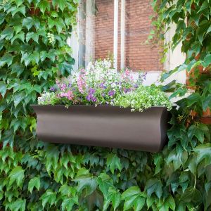 Parada Window Boxes - Espresso