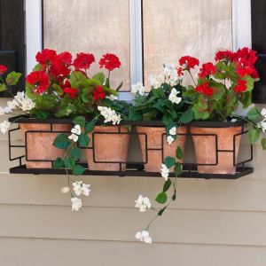 Contemporary Window Box Cage