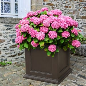 Prestige Large 28x28 Patio Planter - 3 Colors
