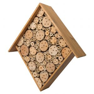 Aster Honey Stain Bee House