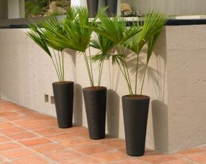 Brighton Tall Modern Planters - Choose from 3 sizes and 3 Colors