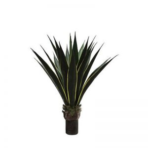 36in. Duraleaf Unpotted Yellow/Green Agave Plant, Outdoor