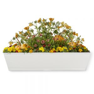 Modern Farmhouse Window Boxes - White
