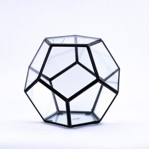 9 inch Multifaceted Geometric Glass Table Top Terrarium