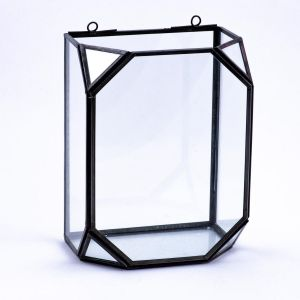 Truncated Glass Cube Wall Terrarium