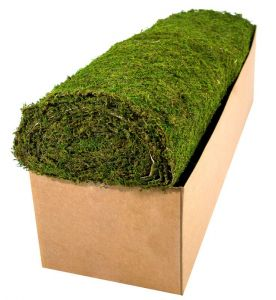 60in. Wide Preserved Moss Roll - Choose Your Length