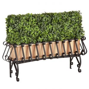 Ivy Hedge in Redwood-Lined European Iron Planter