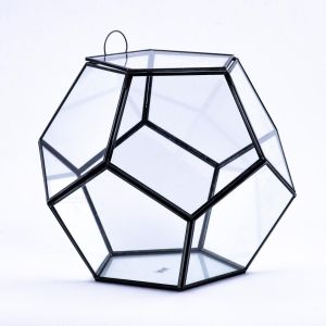 11 inch Multifaceted Geometric Glass Tabletop Terrarium