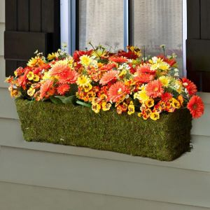 Moss planter with yellow and orange flowers