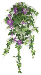 28in. Clematis Vine - Lavender, Indoor
