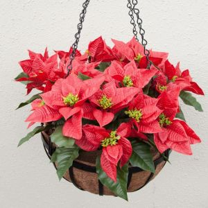 "Artificial Poinsettia Prepopulated in 18"" English Garden Hanging Basket"